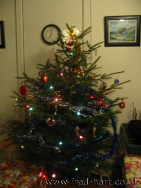 Christmas Tree - December 2010