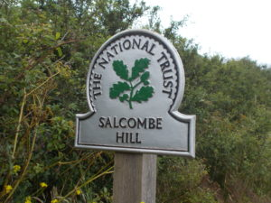 Salcombe Hill